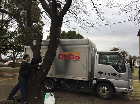 綾瀬市役所イルミネーション2